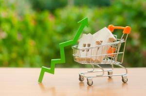 De woningnood in Nederland met stijgende huizenprijzen